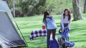 four people : Family Enjoying Camping Holiday In Countryside Stock Footage