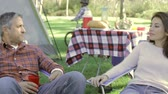 quatro pessoas : Family Enjoying Camping Holiday In Countryside Stock Footage