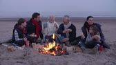 vater : Multi-Generationen-Familie, die Grill auf Winter Beach hat Stock Footage