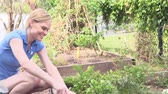 pastime : Woman Digging Carrots On Allotment Stock Footage