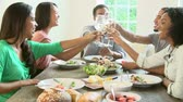 celebrar : Slow Motion Shot Of Friends Enjoying Meal At Home Together Vídeos