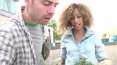 zahradník : Couple Planting Rooftop Garden Together In Slow Motion