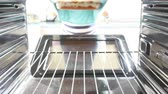 pasta dishes : Woman Putting Dish Of Lasagne Into Oven To Cook