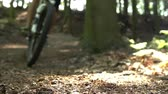 vtt : Ralenti Shot Of Man Riding Mountain Bike Grâce Woods