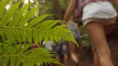 деталь : Close up of fern leaves,blurred people pass in background