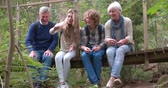 вид : Grandparents and grandchildren sitting on bridge in a forest Стоковые видеозаписи