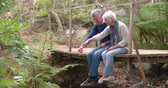 sentar se : Senior couple sitting on a wooden bridge in forest Stock Footage