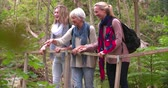 três pessoas : Three generations of women walking to a bridge in a forest