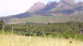 temporadas : View Of Fields And Mountains In South African Landscape
