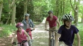 outdoor pursuit : Family Riding Mountain Bikes Along Track