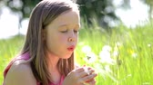 dzieci : Girl Sitting In Summer Field Blowing Dandelion Flower Wideo
