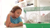 sypialnia : Young Boy Looking At Pet Hamster In Cage