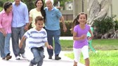grupo de pessoas : Slow Motion Shot Of Multi Generation Family Walking In Park Stock Footage