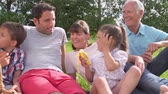 grandparents : Multi Generation Family Enjoying Picnic In Countryside