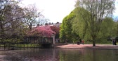relaxation : Clarence Bridge, Regents Park, London in spring Stock Footage