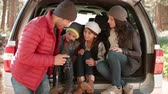 quatro pessoas : Family looking at photos on a camera in the open back of car Stock Footage
