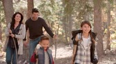 right : Hispanic family hiking in forest walk out of shot right side