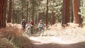 recreativa : Grandparents cycling with grandchildren in a forest Vídeos