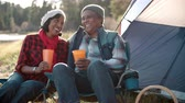 recreativa : Senior black couple on camping trip outside tent, close up
