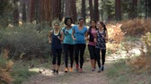 recreativa : Group of five women runners talking as they walk in a forest