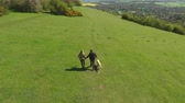 alto : Aerial Shot Of Mature Couple And Dog On Walk In Countryside