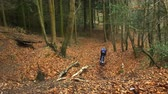 concentrando : Young man cross-country cycling in forest, elevated view, shot on R3D Vídeos