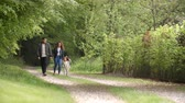 pista : Couple and young daughter enjoying a country walk together Stock Footage