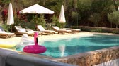 piscina : Outdoor swimming pool and garden with sun loungers