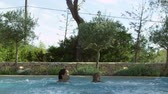 traje : Family On Vacation Jumping Into Outdoor Pool Stock Footage