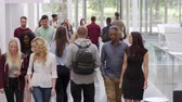 выше : Students and teachers walk in foyer of a modern university, shot on R3D Стоковые видеозаписи