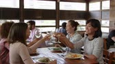 local : Female friends making a toast during lunch at a restaurant Vídeos