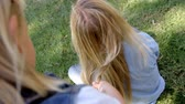 все : Young girl braiding mothers hair in a park, elevated view