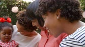 attention : Multi generation black female family members in garden Stock Footage