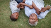 vnuk : Black grandad and grandson play lying on grass, aerial view