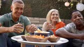 forties : Group Of Mature Friends Enjoying Picnic In Backyard Together Stock Footage