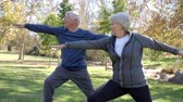 hetvenes évek : Senior Couple Doing Yoga Exercises Together In Park