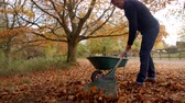 ancinho : Mature Man Raking Autumn Leaves Shot In Slow Motion