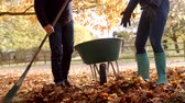 два человека : Mature Couple Raking Autumn Leaves Shot In Slow Motion