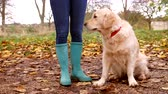 lifestyle shot : Mature Woman On Autumn Walk With Golden Retriever