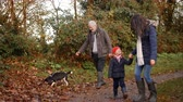 three generation : Multi Generation Family Take Dog For Walk In Fall Landscape Stock Footage