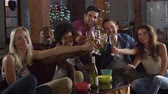 cerveja : Adult friends look to camera and make a toast at a party, shot on R3D