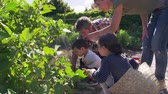 udržitelného : Family Working On Community Allotment Together