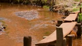 Clean stream of water flowing over the red soil of Cambodia. Dostupné videozáznamy