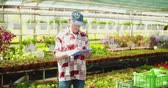 検査官 : Researcher Examining Potted Plant At Greenhouse 動画素材