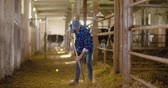 ringhiere : Confident mature male farmer holding pitchfork in stable