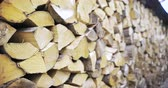 ladrão : Stack of logs chopped trees. Wood ready for smoking. Stock Footage