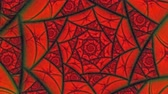 radial : Lovers Red Spider Web Flower Pattern  Animation Background . Perfect seamless loop background and special effect psychoactive footage in full color of rotational design and pattern that create a spinning optical illusion vortex that can have mesmerising h
