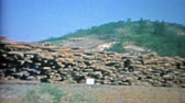 arquivo : 1957: US plywood corporation industrial logging dump depo trucking center.