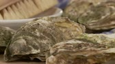 molusco : Fresh oysters and a kitchen brush Stock Footage