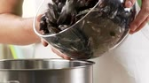 molusco : Mussels being added to a pot Stock Footage